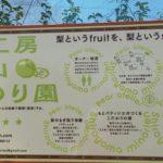 千葉・パティシエが作る梨!「みのり園」に梨狩りに行ってきました♡