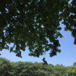 「小人の為のスペース」を作る為の具体的な休み方