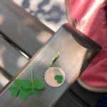 10円玉をピカピカにする!身近にある植物カタバミで遊ぼう!